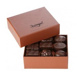 Damyel Chocolate praline 250g